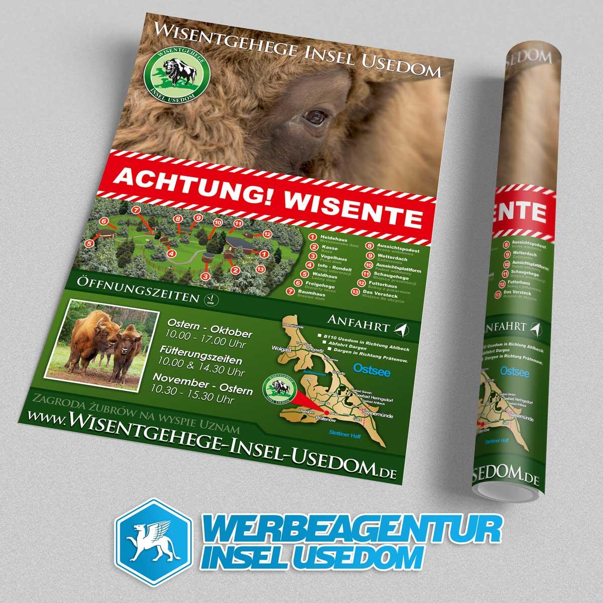 Plakat Wisentgehege Insel Usedom